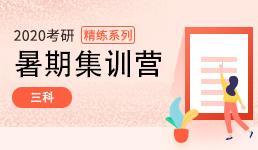 2020考研暑期集训营_三科